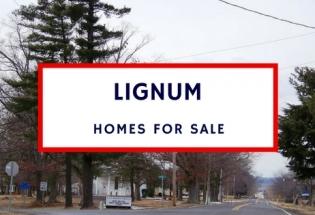 lignum va homes for sale