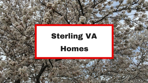 Single Family Home For Sale In Sterling Va